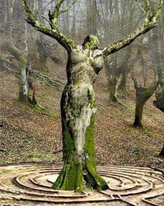 labyrinth women in the forest